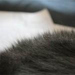 頭皮が乾燥してパラパラフケが多い原因と治す対処法はコレ!