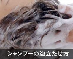 shamp23-1