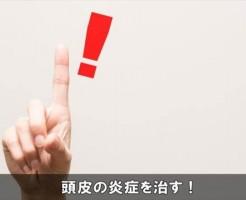 touhienshounaosu7-1