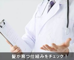 kamisodatusikumi10-1