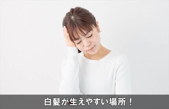 siragahayasuibasho2-1